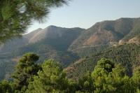 Andalusia 4