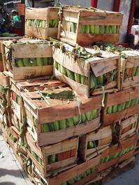 Corn Crates
