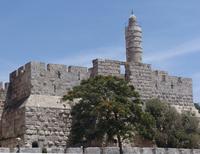 david tower