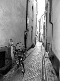 Lonely bikes