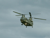 chinook coming in 2