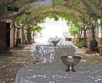 Restaurant's patio