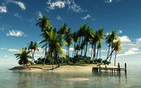 Tropiocal Island