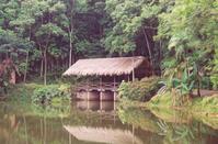 Natureza 1