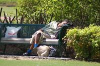 Centinnial Park Georgia