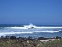 Hawaiian Scenes 5