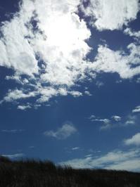 Blavand Strand Northern Sea 3