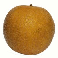 Melon serie 21