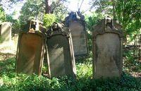 Graveyard0 1