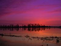 Dawn on the Floodplain 1