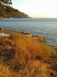 Lonely Coast 1