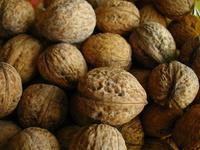 walnuts 3