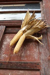 Corn on a door
