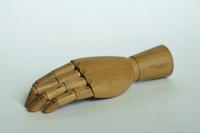 Wodden hand 2