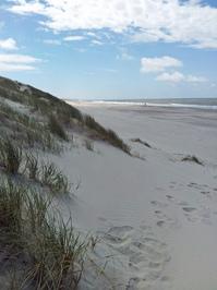 Blavand Strand Northern Sea 2