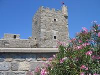 Bodrum, Castle