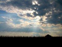 Filter rays of sunlight