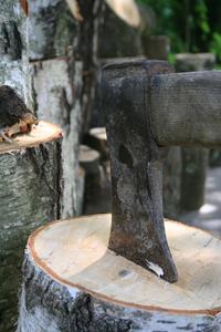 Logs in Slovakia 2