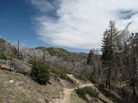 North Shore Trail