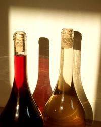 vinos 1