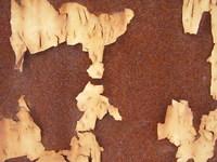 rustic wall 3