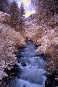 river in infrared