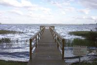 Dock at Lake Shore