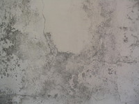 texture09b