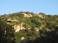 Laurel Canyon Geology