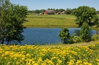 Barn and small lake