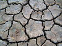 Ground cracks - Grietas Suelo