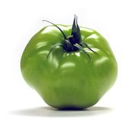 green tomato 1