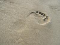 Foot Print - Israel beach 1