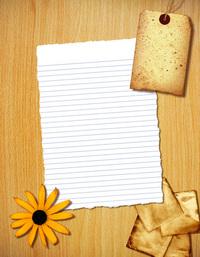 Torn Paper 13