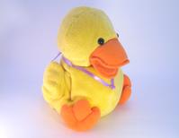 Quack Quack 1