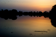 Shiv Sagar Lake - Khajuraho