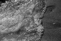 coast line (water & sand)