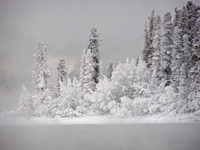 Icy Isle