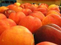 fruit - peach 2