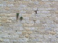 Sedan Castle wall