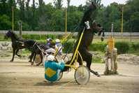 Crash on the Horseracing 2