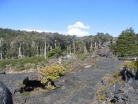 volcanic landscape, Chile
