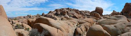 Rocks Panorama
