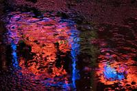 Neon lights in the rain