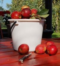 The apple bucket