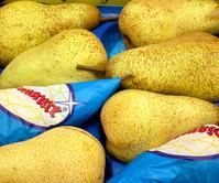 italian pears