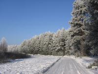 winter_road_ 3