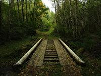 Rustic Bridge in Autumn