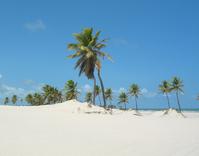 mangue seco beach 6
