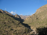 Winter in Sabino Canyon, Arizona 3